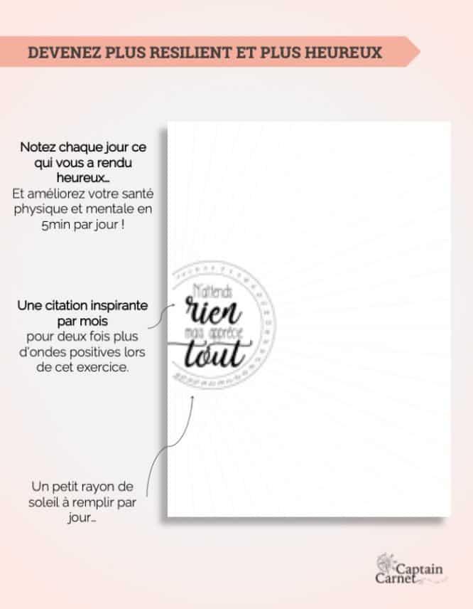 365-jours-gratitude-citation-imprimer